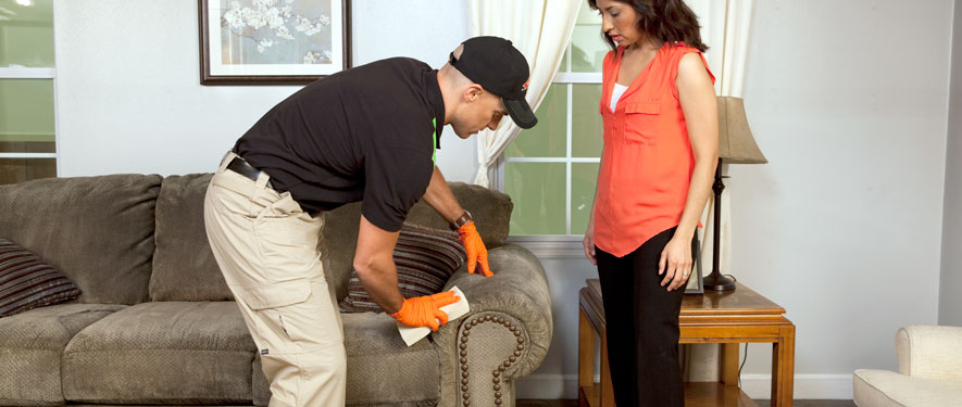 Lockport, IL carpet upholstery cleaning