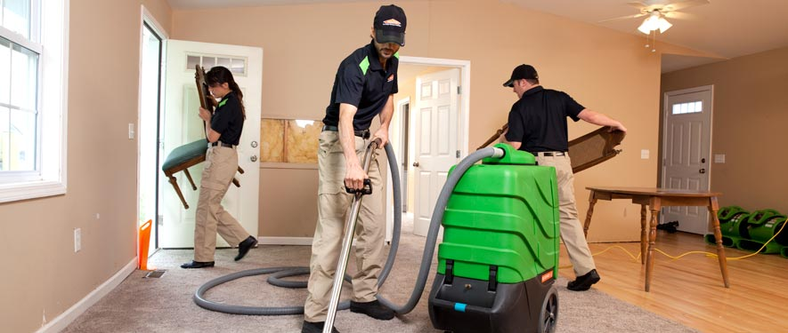 Lockport, IL cleaning services